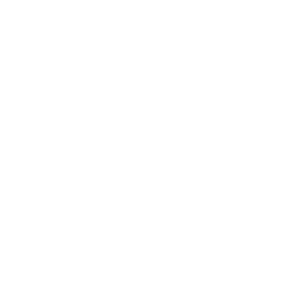 Logo Timothy Van Daele